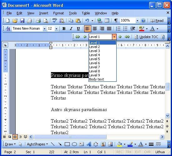 word_turinys_3